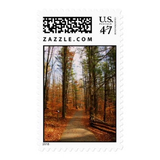 Hartwick Pines Postage Stamp