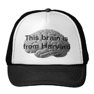 Harvard Brain Hat