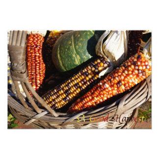 Harvest Basket Picture Print