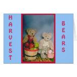 Harvest Bears Cards