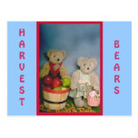 Harvest Bears Post Cards