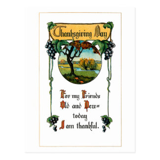 Harvest Grapes and Thanksgiving Greeting Postcard