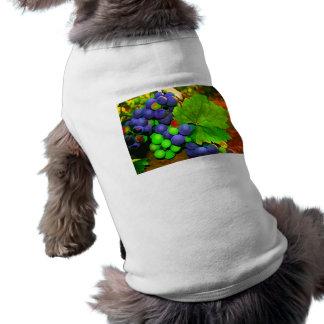 Harvest Grapes T-Shirt