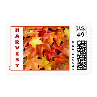 HARVEST postage stamps Red Orange Yellow Leaves