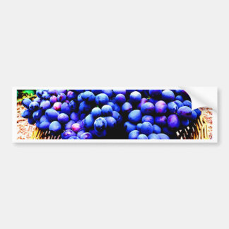 Harvest season seedless grapes fruit bumper sticker