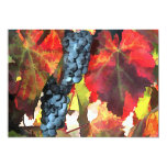 Harvest Time Grapes and Leaves 5x7 Paper Invitation Card