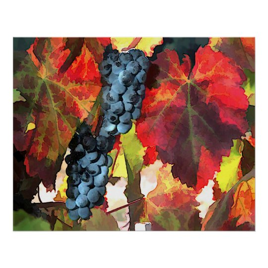 Harvest Time Grapes and Leaves Poster