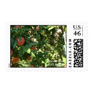 Harvest Time NYS Apples stamp
