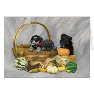 """Harvest Time"" schnauzer puppies card. Card"