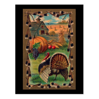 Harvest, Tom and Farm Vintage Thanksgiving Postcard