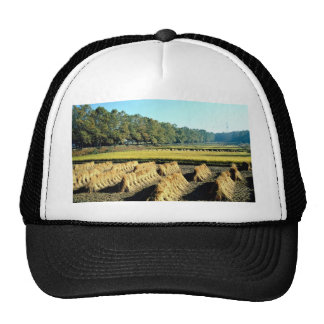 Harvesting in fall mesh hats