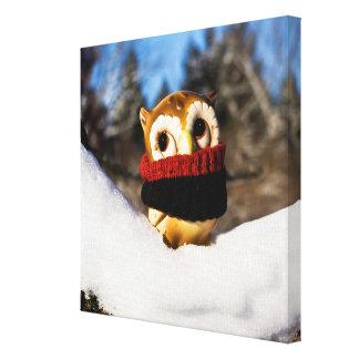 Harvey the Owl IV Canvas Print