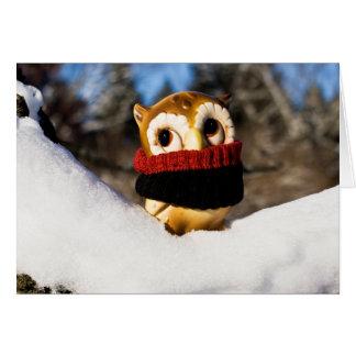 Harvey the Owl IV Card