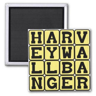 Harvey Wallbanger Tasty Cocktail Fridge Magnet
