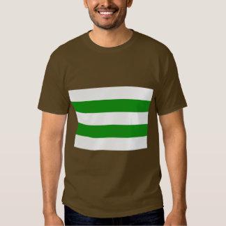Hasseltvlag, Belgium Shirts