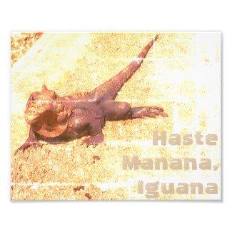 Hasta Manana, Iguana Print Quote