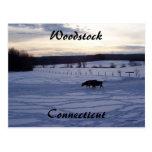 Hasta que vuelven a casa las vacas tarjetas postales
