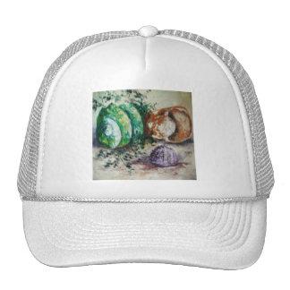 Hat Ann Hayes Painting Sea Shells