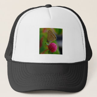 Hat - Butterfly Image
