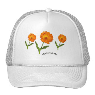 Hat - Calendula with Text
