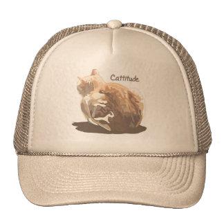 Hat- Cattitude