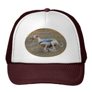 hat - Club des Lévriers du Pays Beaunois
