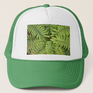 Hat, Ferns # 3638 Trucker Hat