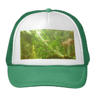 hat hunting fishing dad ocassion gift