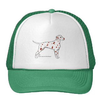Hat: Liver-Spotted Dalmatian