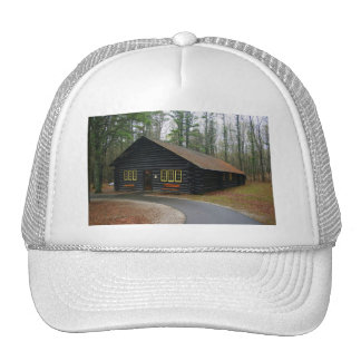 Hat - Log Cabin