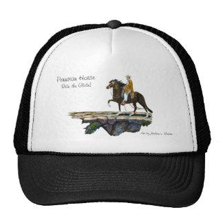 Hat, Peruvian Mountain Trail Trucker Hat