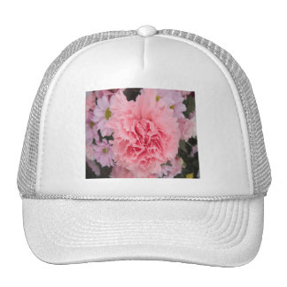 Hat Pink Carnation Beauty