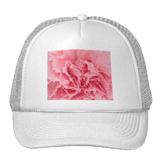 Hat Pink Carnation Close Up