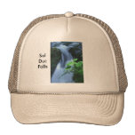 Hat:  Sol Duc Falls Trucker Hat