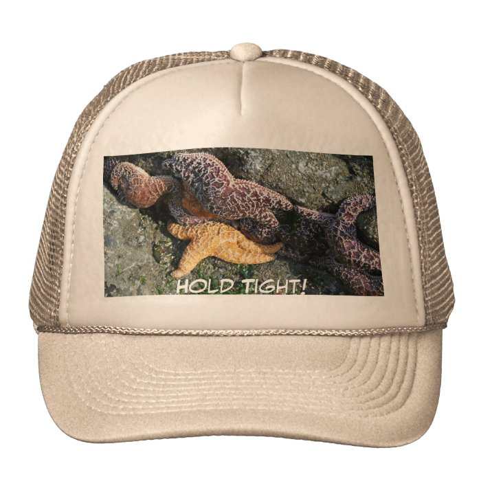 Hat:  Starfish Trucker Hat