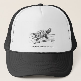Hat / Stinkpot Turtle