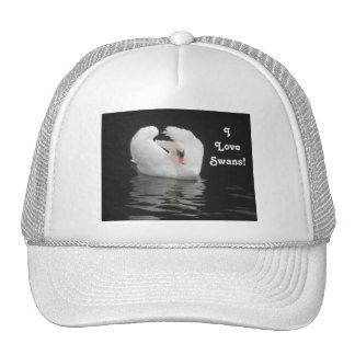 Hat Swan Swimming, I Love Swans