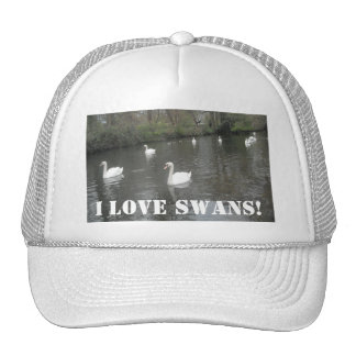 Hat Swans Swimming, I Love Swans