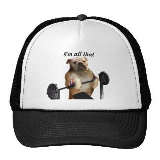 Hat weight lifting dog boxer
