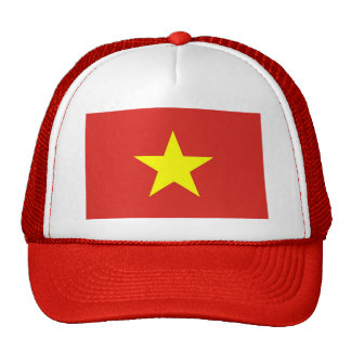 Hat with Flag of Vietnam