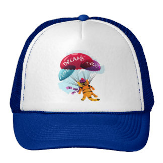 Hat with flying cat picture