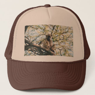 Hat With Image Of Baboon In Tree