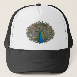 HAT with Peacock Finery