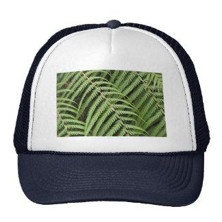 Hat with Tree Fern Motif