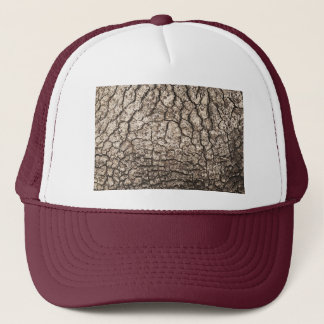 Hat with Wood Texture