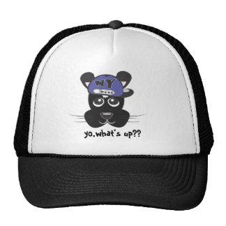 hat with yo dog