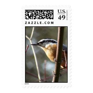 Hatch Postage Stamp