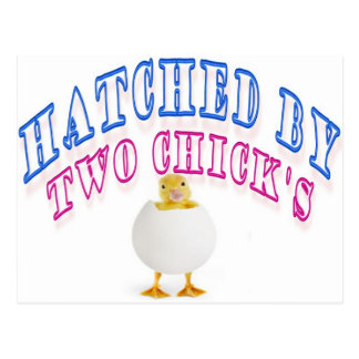 Hatched by two chick's. postcard