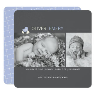Hatched Egg Baby Chick Boy Birth Announcement