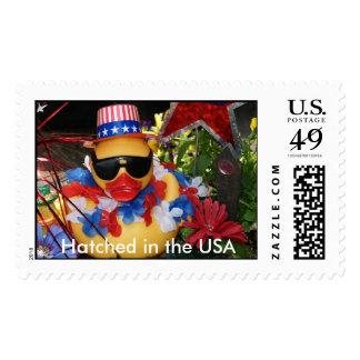 Hatched in the USA  Stamp (Large Horizontal)